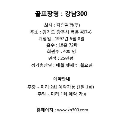 강남300 요약.jpg